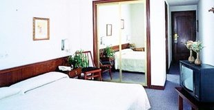 Habitación individual estándar hotel ele acueducto segovia